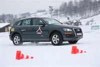 Audi quattro camp в Яхроме, фото 2