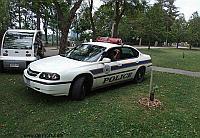 Умершему в машине водителю две недели выписывали штрафы за неправильную парковку, фото 1