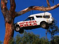 Город «Скорость» переименовали в «Скорость убивает», фото 1