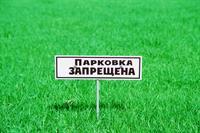 В столице прошла акция против автомобильных парковок на газонах, фото 1