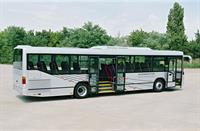 600 пригородных автобусов Mercedes для Московской области , фото 3