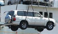 В порт Владивостока снова привезли зараженные автомобили, фото 1