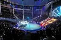 Фестиваль MUSA MOTORS – «Цирк для взрослых c Comedy Club», фото 1