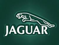 Ford не будет продавать Jaguar, фото 1