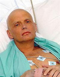 Найти убийц Литвиненко помешали московские пробки, фото 1