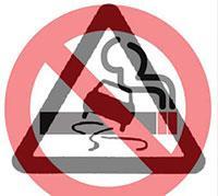 Закон о запрете курения за рулем отклонен, фото 1