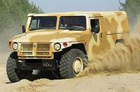 """В 2007 году """"Тигр"""" пойдет служить в армиию, фото 1"""