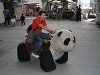 Китай, оказывается, более практичен. Интересно, как выглядит ДТП с участием этой машины?