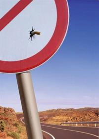 Дорожные глупости (19 фото), фото 6