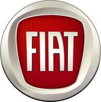 Итальянские заводы Fiat убыточны, фото 2