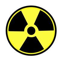 Сотрудники Владивостокской таможни выявили первые зараженные радиацией машины, фото 1