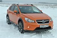 Госдуму просят обязать водителей устанавливать на машины зимнюю резину, фото 1