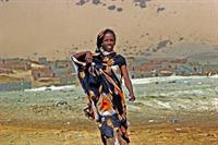 Дакар 2007: вести с полей, фото 5