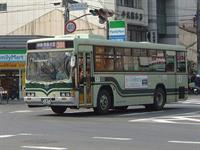 Япона мать, фото 1