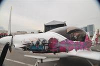 Аэрограф - художественный салон под открытым небом, фото 8