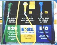 Биотопливо потеснит бензин и дизтопливо, фото 1