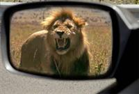 Защити себя и свой автомобиль, фото 1