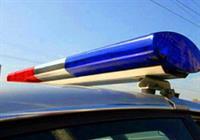 МВД растонирует свои автомобили, фото 1