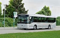 600 пригородных автобусов Mercedes для Московской области , фото 2