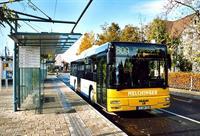 60% пассажиров автобусов в Германии – женщины, фото 1